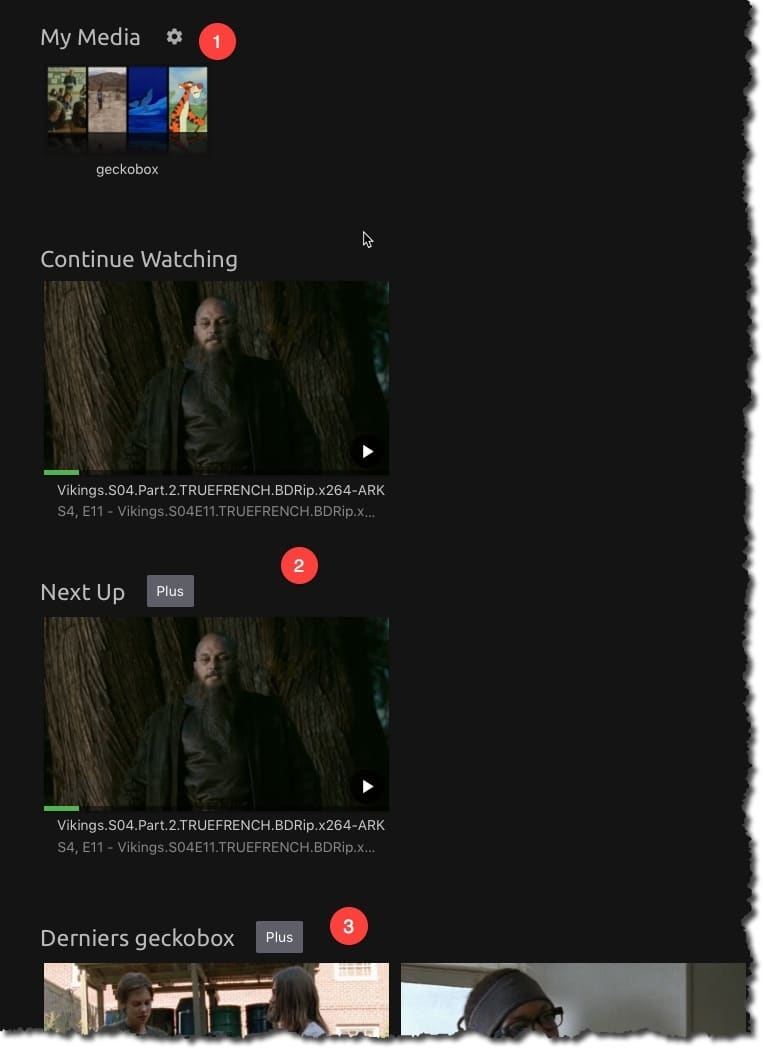 Activer le streaming avec Emby sur Gecko-Box.com