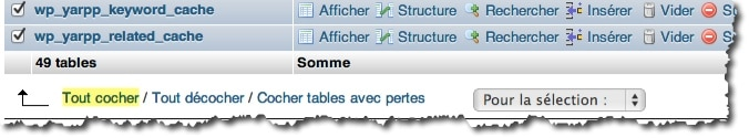 Optimiser les tables de la base MySQL de WordPress.