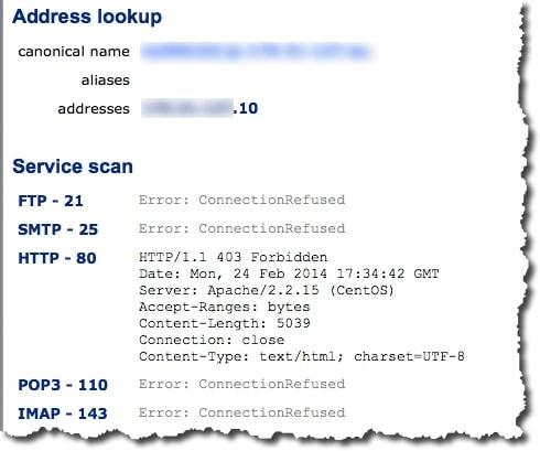 CentralOPS résultats test serveur web