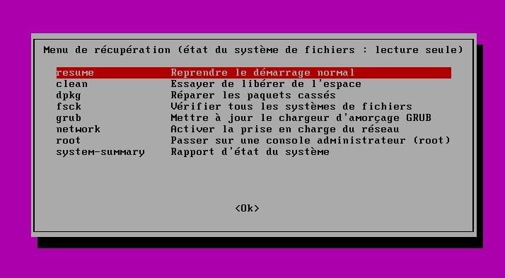 Sortir du menu de récupération de Ubuntu avec la commande exit.