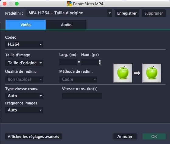 Personnaliser les paramètres de la vidéo dans Movavi Video Converter