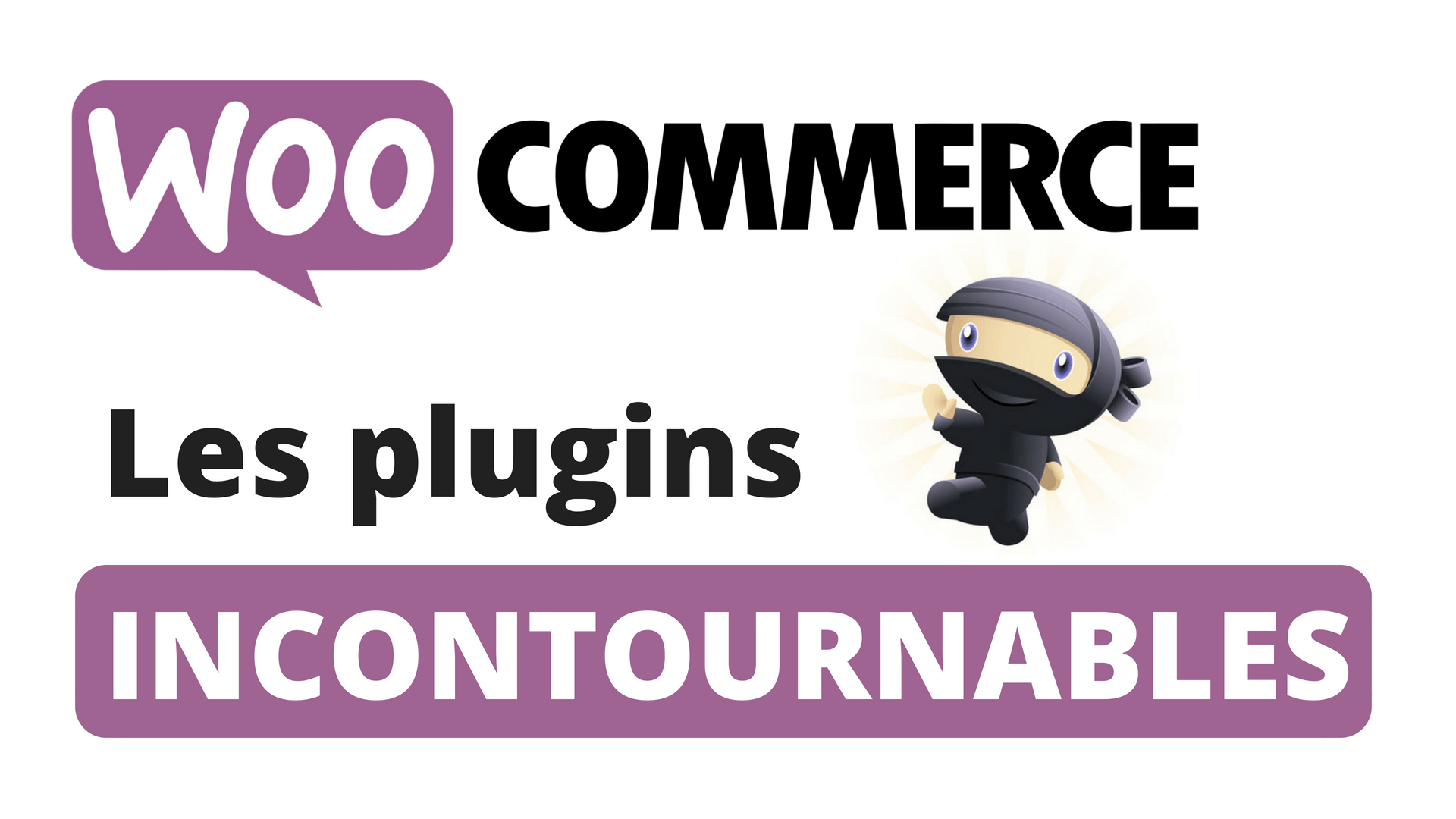 les meilleurs plugins Woocommerce.