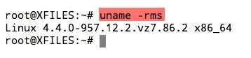 vérifier la version du noyau d'Ubuntu avec la commande uname -rms