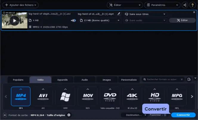 Convertir une vidéo en MP4 avec Video Converter