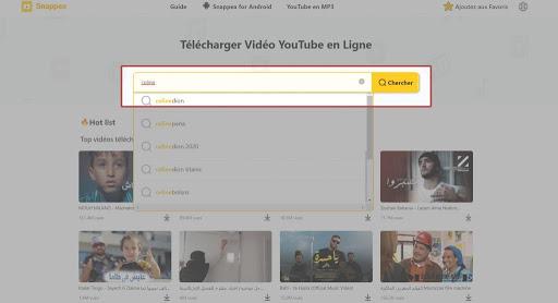 télécharger des vidéos YouTube avec Snappea Web Downloader