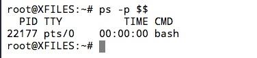 Connaitre le Shell que l'on utilise par défaut sous Linux