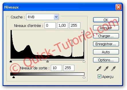 Appliquer_Fausses_Craquelures_7