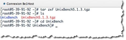 Unixbench_6