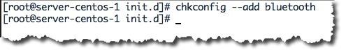 chkconfig_11