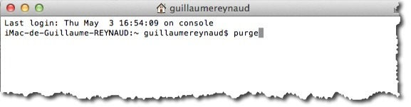 purge_memory_4