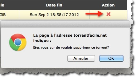 torrent facile 12 Comment télécharger des torrents sans risque avec TorrentFacile.