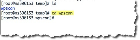 wpscan_4